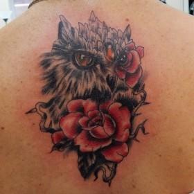 Татуировка на спине у девушки - сова и розы