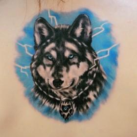 Татуировка на спине у девушки - волк
