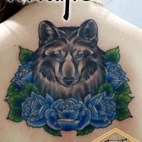 Татуировка на спине у девушки - волк и розы