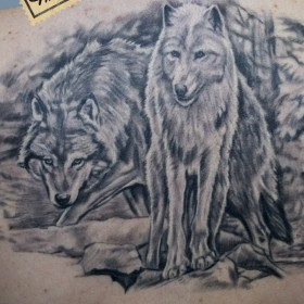 Татуировка на спине у девушки - волк и волчица