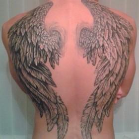 Татуировка на спине у парня - крылья