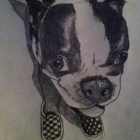 Татуировка на спине у парня - собака в тапках