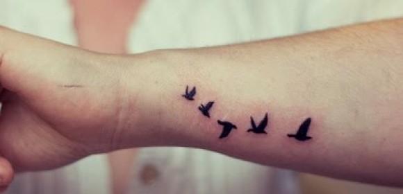 Татуировка птички - значение, эскизы тату и фото