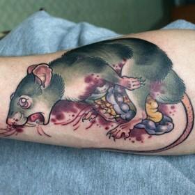 Татушка на предплечье парня - крыса