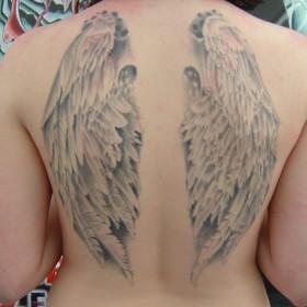Татушка у девушки на спине с изображением крыльев