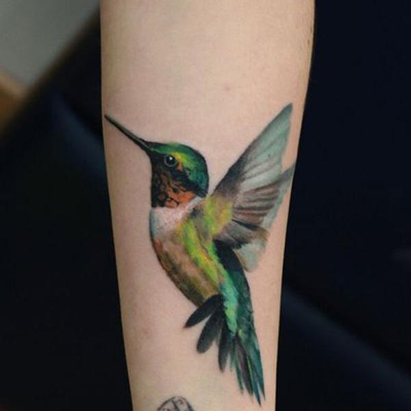 Колибри, птица. Самая 5
