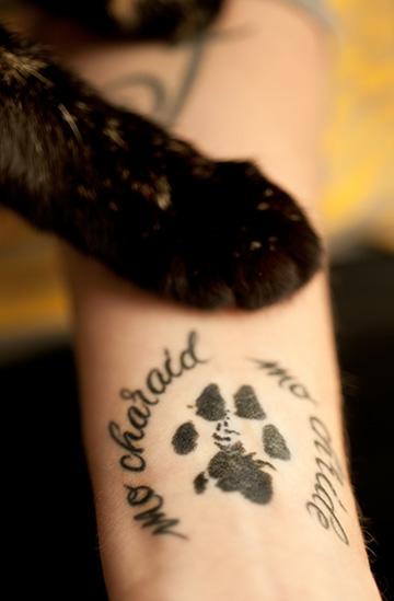 Татуировки фото кошачья лапа
