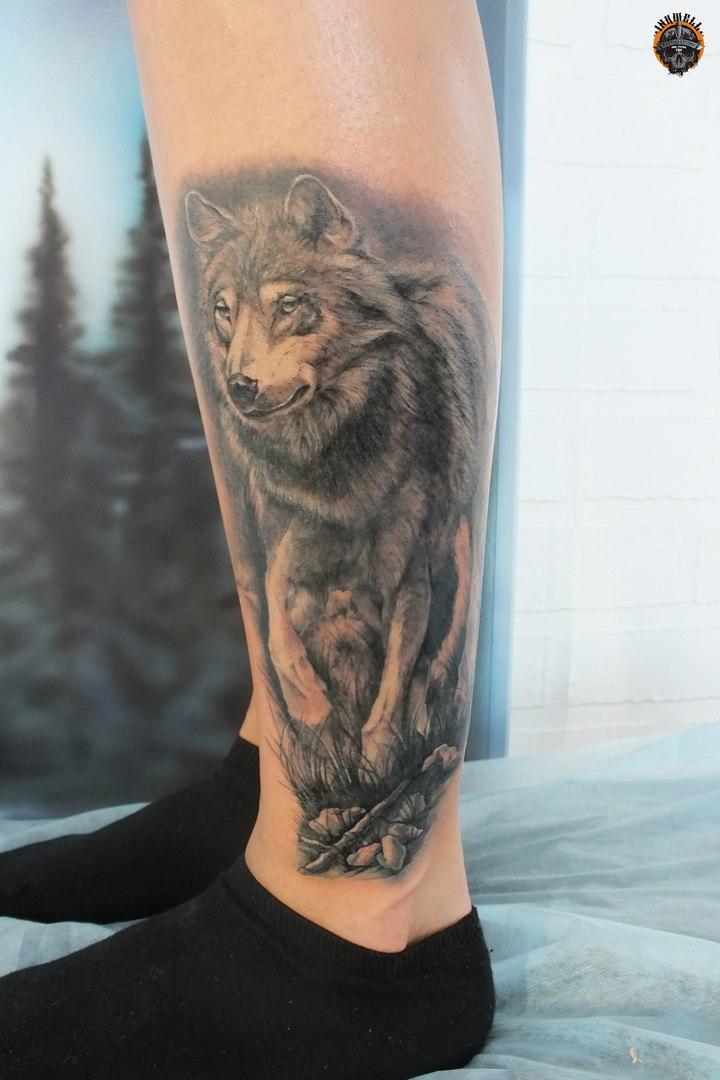 Тату волка на голени