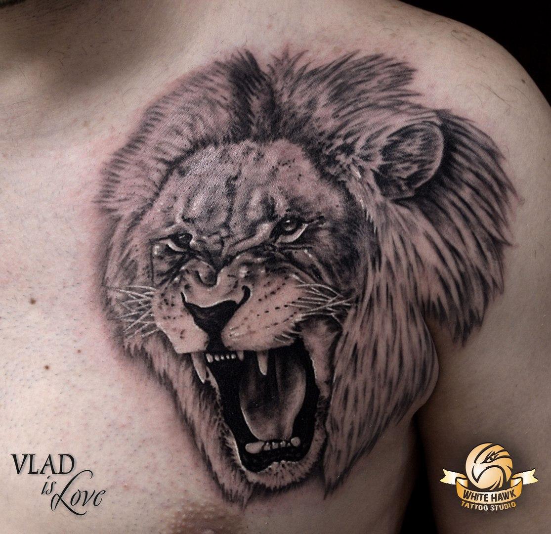 Тату льва на плече мужские фото оскал