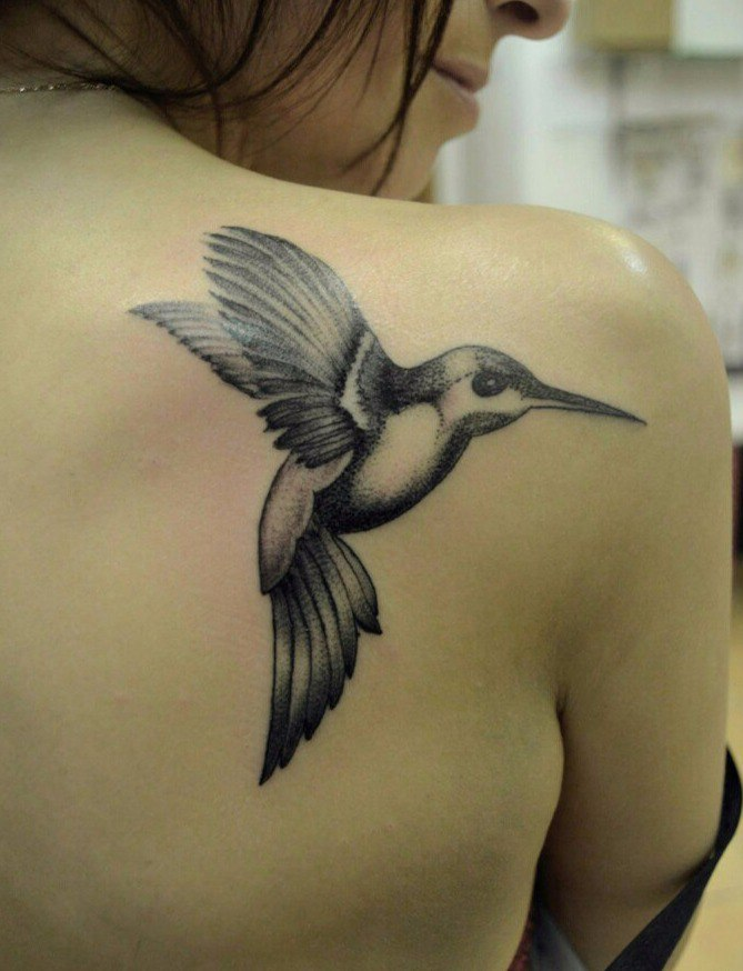 Колибри, птица. Самая 92