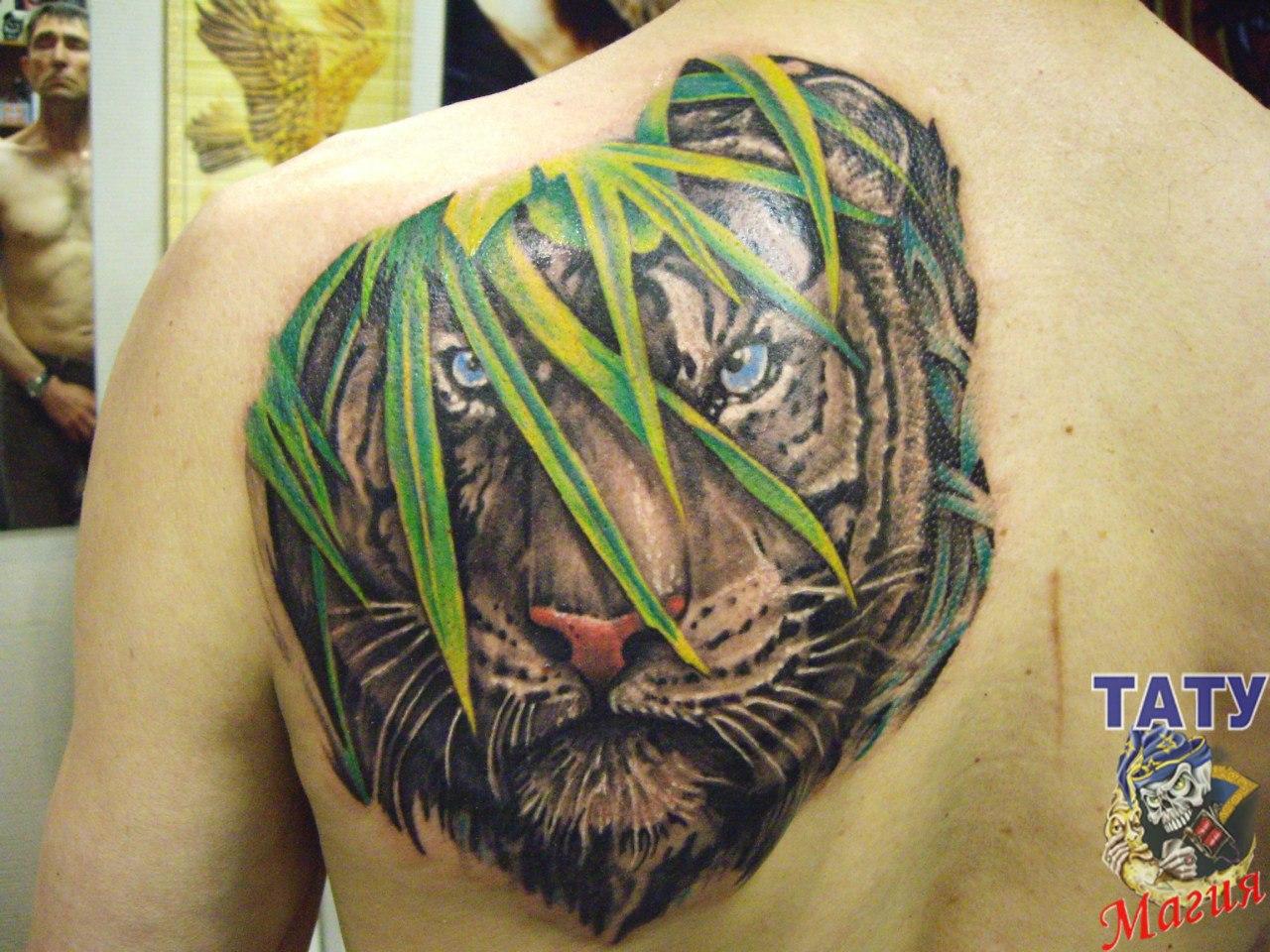 Фото тату с тигром на лопатке