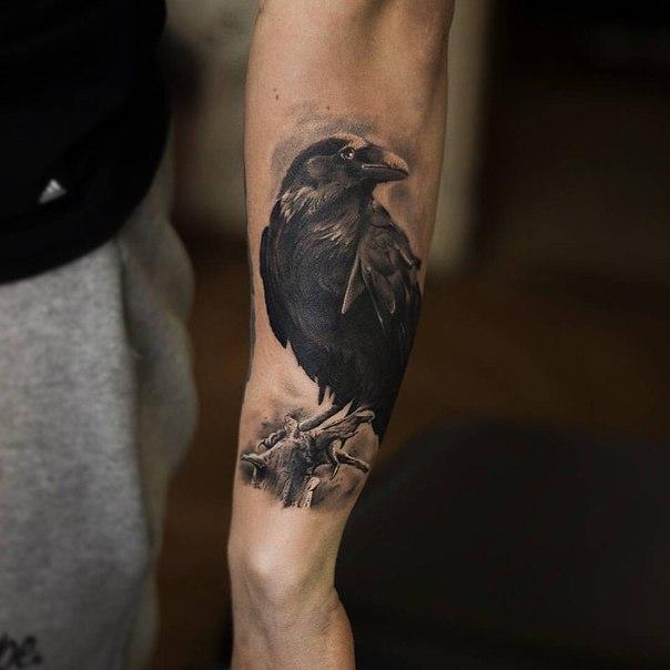 Значение тату ворон - Татуировки и их значение