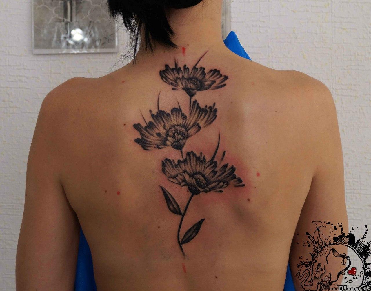 Тату цветы фото лучших татуировок для девушек и мужчин 870