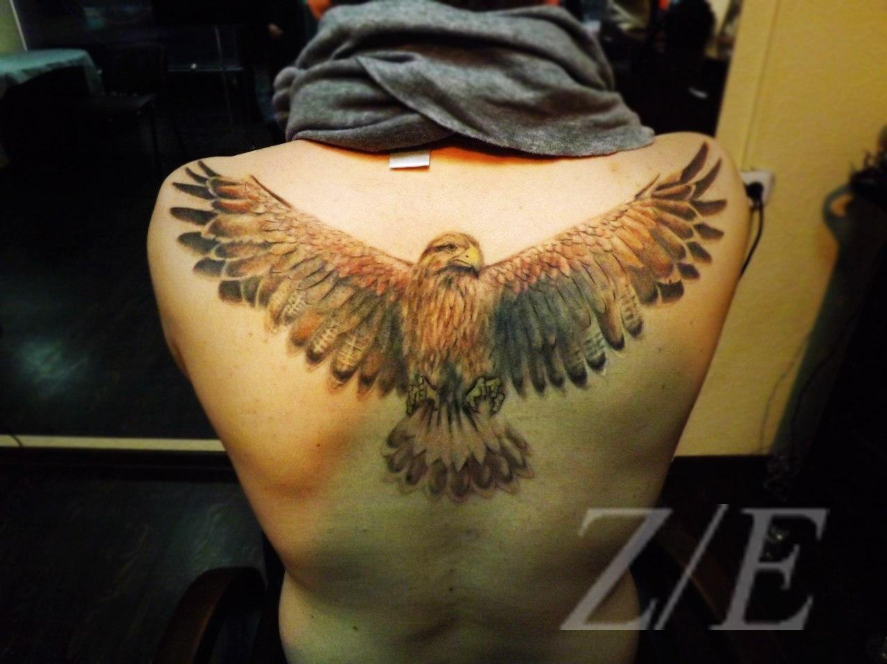 Фото тату на спину орла