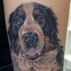 Пес - татуировка на предплечье парня