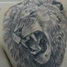 Тату на лопатке парня - лев