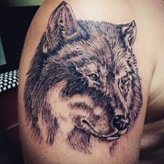 Тату на плече парня - волк