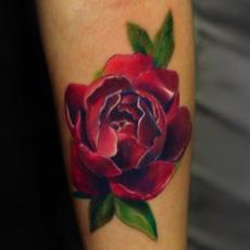 Тату на руке девушки - роза