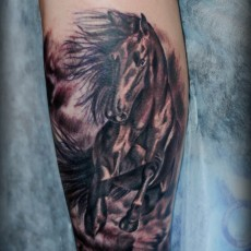 Татуировка на голени у парня в виде лошади