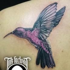 Татуировка на лопатке девушки - колибри