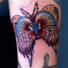 Татуировка на мужском запястье - бабочка