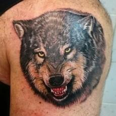 Татуировка на плече парня - волк