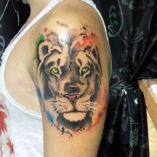 Татуировка на плече у парня - тигр