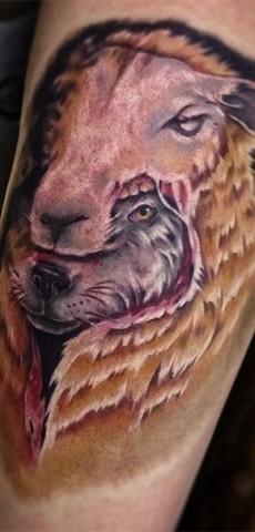 Фото тату волк в овечьей шкуре
