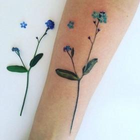 Татуировки незабудок на предплечье