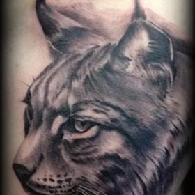 Татуировки рысей на груди