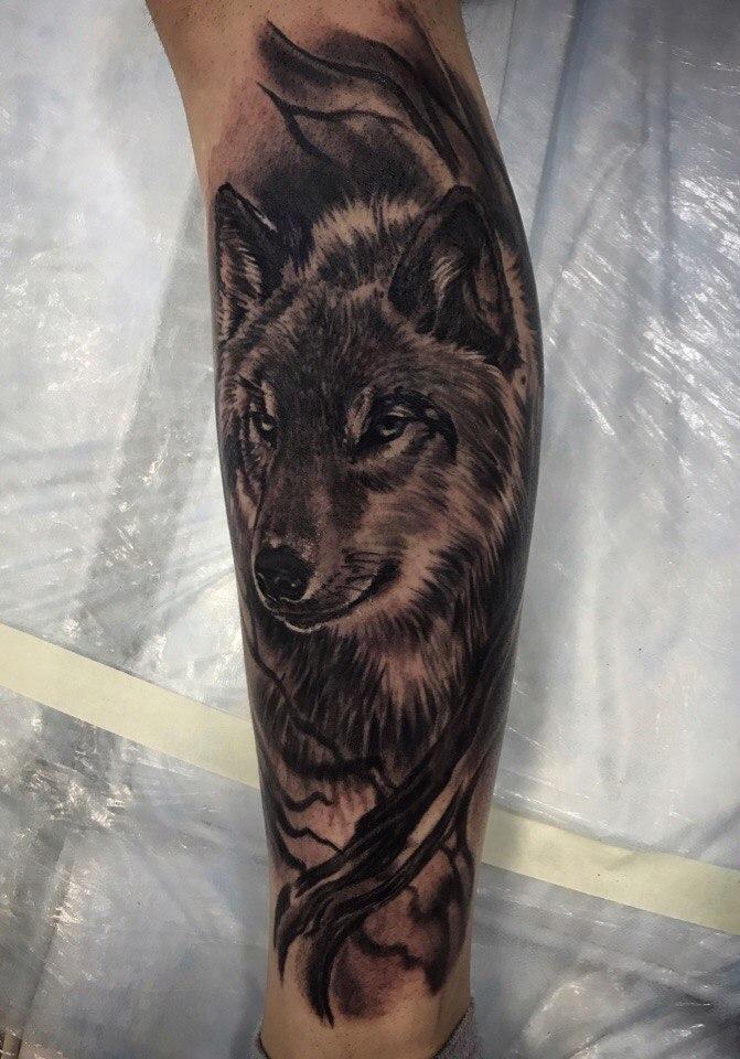 фруктовый фото тату волк на икре этой позиции так