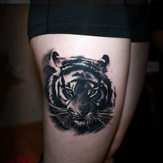 Тату тигров — 133 лучших фото татуировок 2019 года